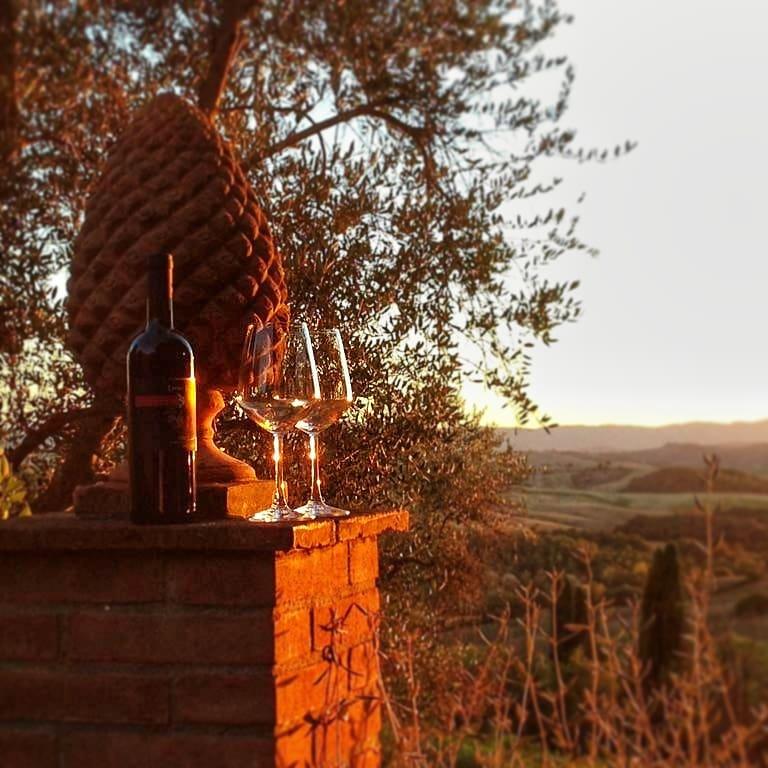 Wine-experiences-wine-tasting